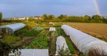 Neue Start-up-Prämie für landwirtschaftliche Kleinstunternehmen